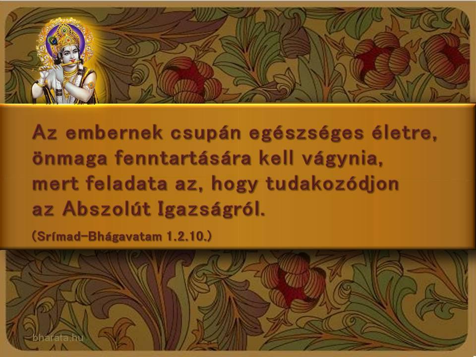 Srímad Bhágavatam idézet